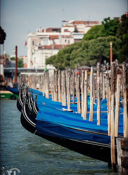 Fotografii Venetia